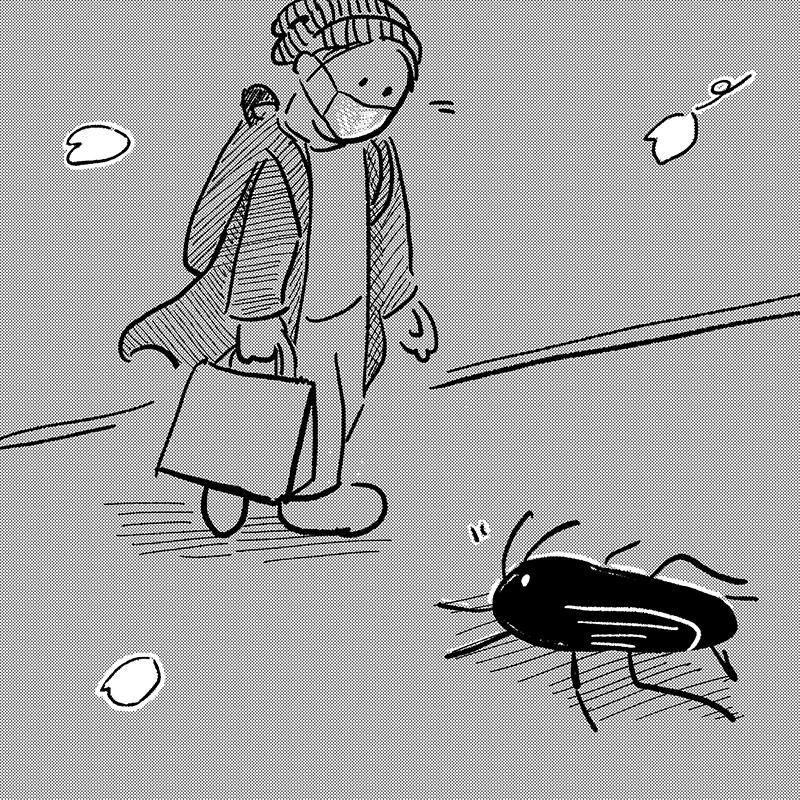I met a cockroache