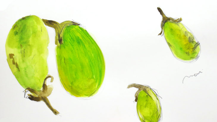 Green eggplants